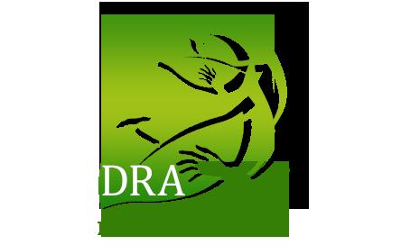 DRAチャリティー音楽コンクール